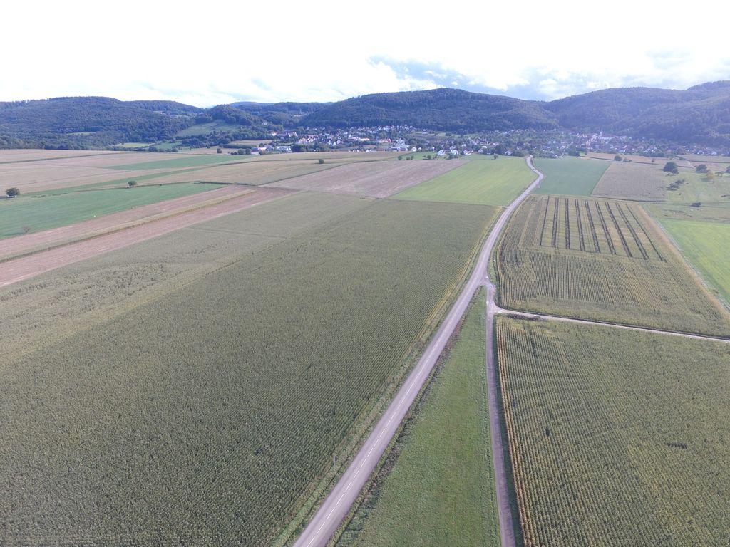 Aérodrome ULM Regio Vieux-Ferrette